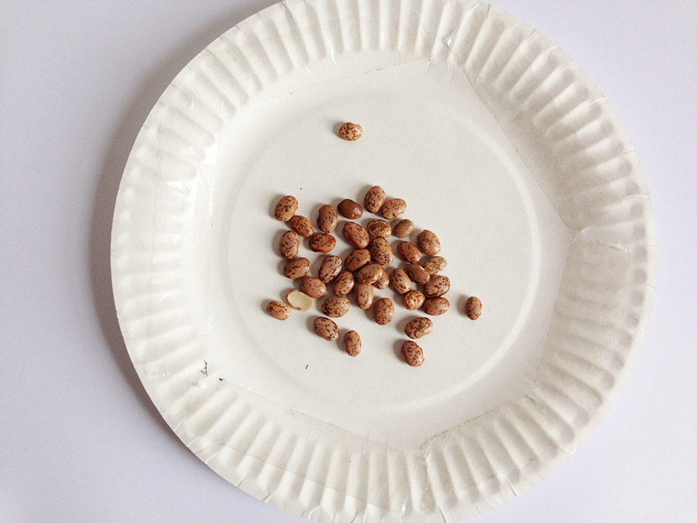 Put a small handfull of beans in the middle of the plate and stick the other one on top