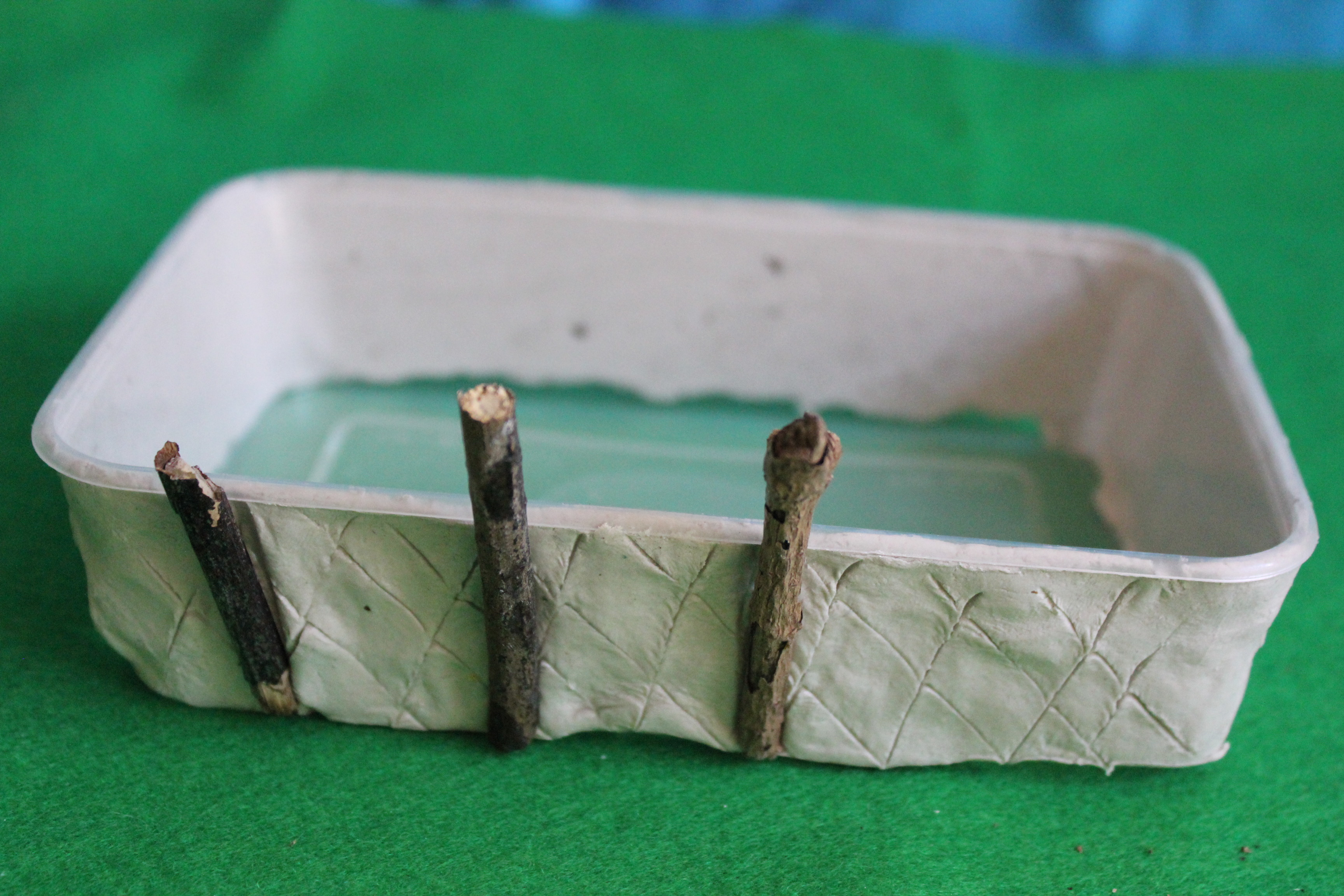 Flatten the clay into a strip and wrap the around the edge of your box. Make light crisscross cuts all along the clay. Brush the clay with some water on your fingers. Break twigs and push into clay.
